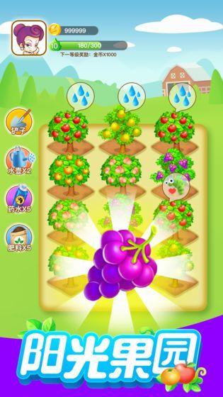 阳光果园图1