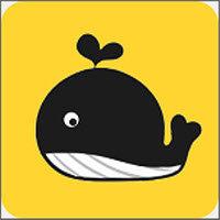 大鲸优惠券