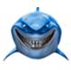 鲨鱼加速器