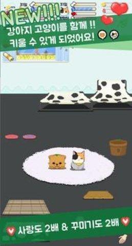成为家人吧养小狗猫图2
