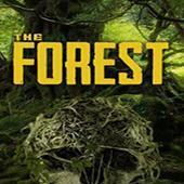 森林破解版