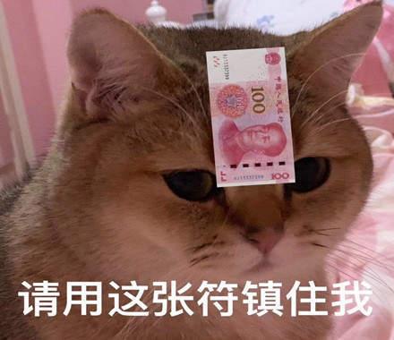 请用这张符镇住我猫咪表情包