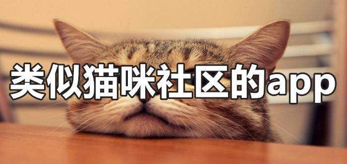 类似猫咪社区的app