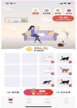 养猫联盟图1