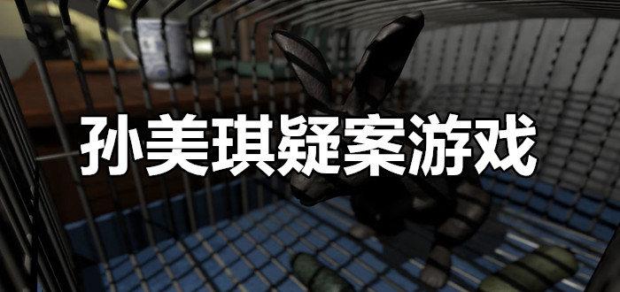 孙美琪疑案游戏