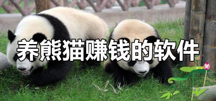 养熊猫赚钱的软件