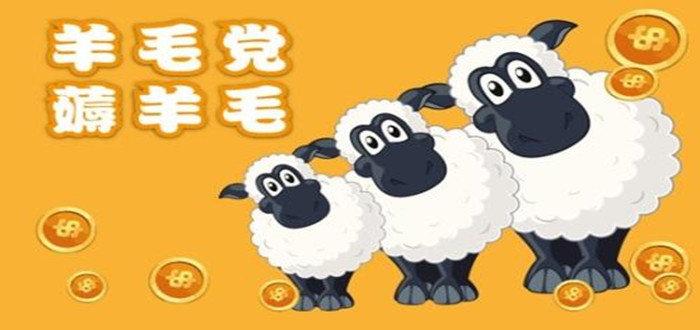 羊毛党必备神器