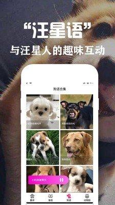 狗语翻译交流器图3