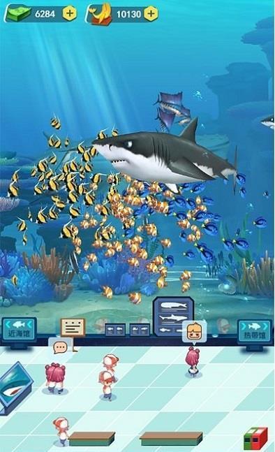 梦幻海洋馆图3