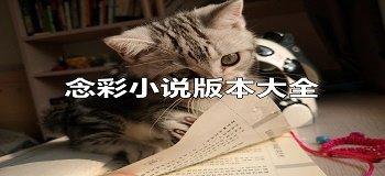 念彩小说版本大全